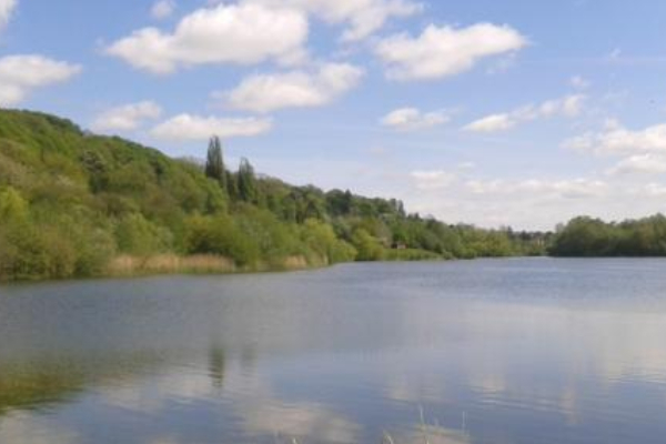 Project to Revitalise Bodenham Lake Given go Ahead by Funders