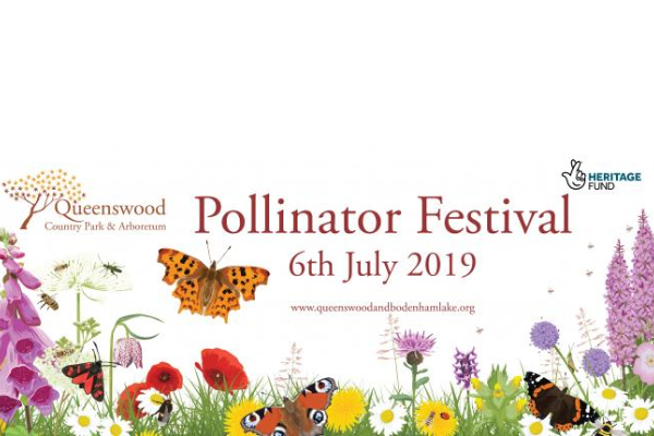 Learn how to help pollinators at Queenswood's 'Buzz about Queenswood' Pollinator Festival