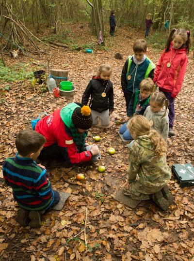 wild forest schools 1